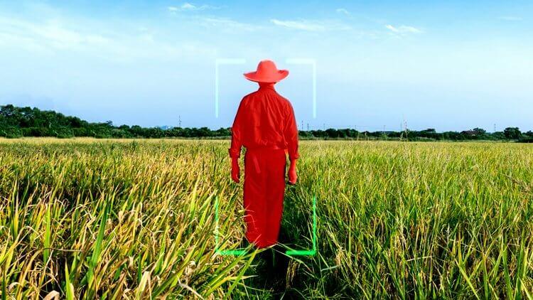 农业机器学习的图像标注