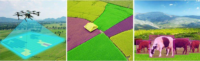 监测土壤,动物和农作物的健康