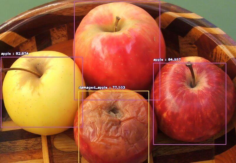 精准农业中的人工智能图像标注应用